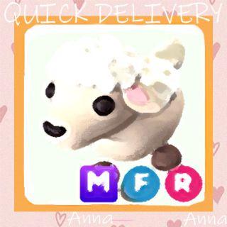 Limited | MFR Lamb