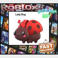 Pet   overlook bay Lady Bug