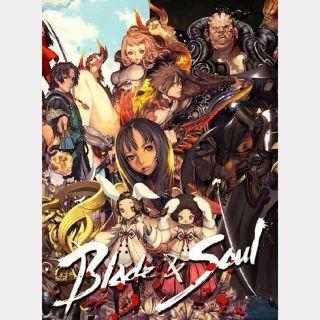 Blade & Soul ( exclusive item bundle