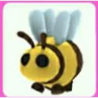 Pet | Bee X5