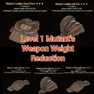 Apparel   Level 1 WWR Mutants Set