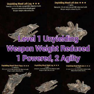 Apparel   Level 1 Uny WWR Set