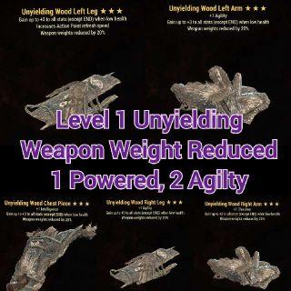 Apparel | Level 1 Uny WWR Set