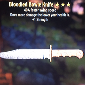 Weapon | Bloodied Bowie Knife