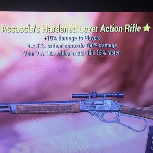 Weapon   Assassins Lever Gun