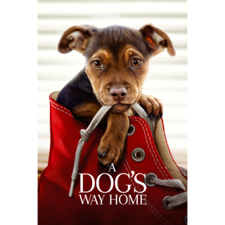 A Dog's Way Home | HDX | VUDU or HD iTunes via MA