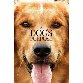 A Dog's Purpose | HDX | VUDU