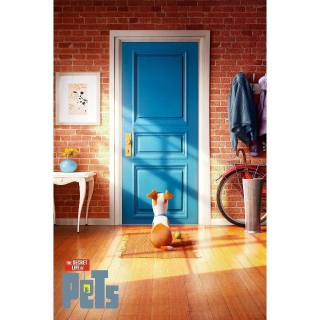 The Secret Life of Pets | 4K/UHD | VUDU