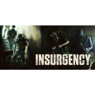 Insurgency   STEAM Key [INSTANT DELIVERY]