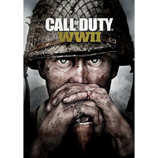Call of Duty: WWII Steam Key Instant Delivery!!!