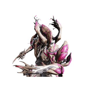 Other | NIDUS COLLECTION