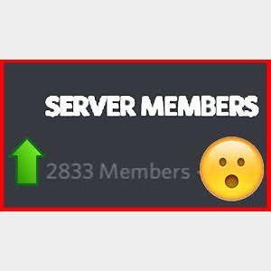 I will Almost 1k Discord Server