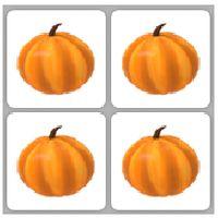 Pet | Throwing Pumpkin x4