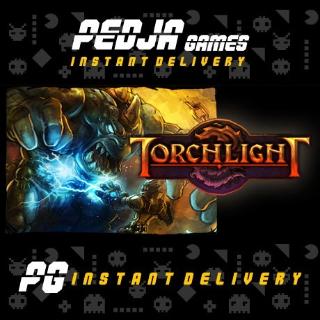🎮 Torchlight