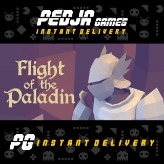 🎮 Flight of the Paladin