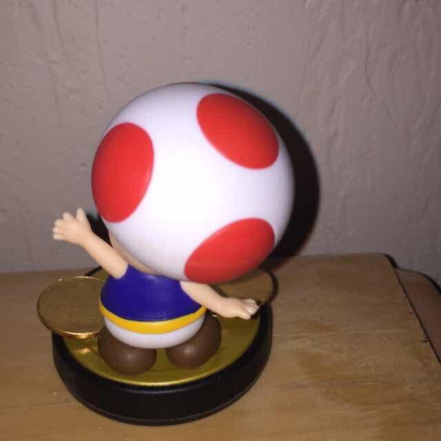 Custom Toad Fighter Amiibo