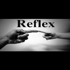 Reflex (steam key)