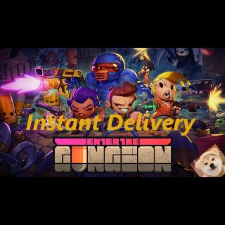Enter the Gungeon (Steam) Instant Delivery