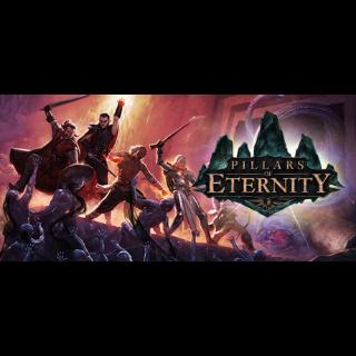 Buy Pillars of Eternity - Hero Edition