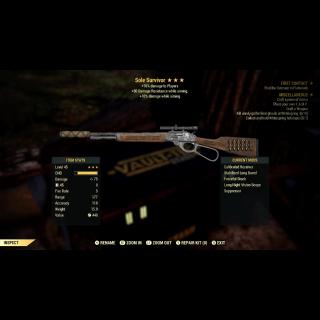 Weapon | Sole Survivor Unique