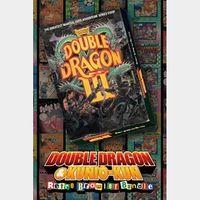 DOUBLE DRAGON Ⅲ: The Sacred Stones