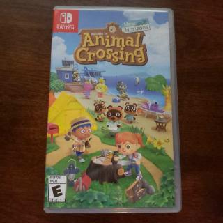 Animal Crossing New Horizons Horizon