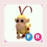 Pet | FR KING MONKEY - PRETEEN