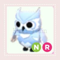Pet | NR SNOW OWL