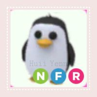 Pet | NFR PENGUIN - FLARE