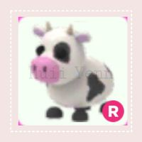 Pet | R COW - PRETEEN