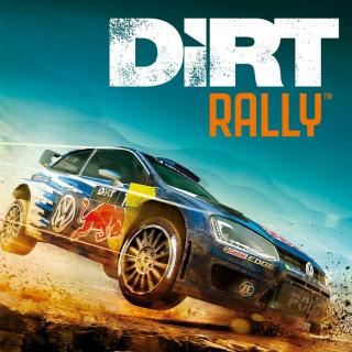 🔑DiRT Rally [steam key]