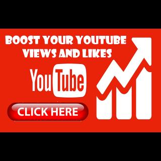 I will provide 1000+ video views