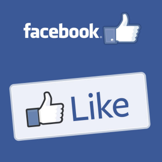 I will provide Facebook Page Likes
