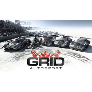 GRID Autosport STEAM CD-KEY Global & (fast delivery)