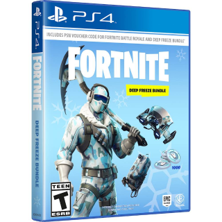 PS4 Playstation 4 Fortnite Deep Freeze bundle and 1000 v-bucks INSTANT auto delivery