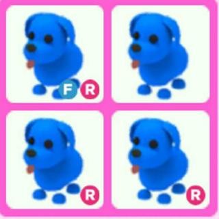 Bundle | 4X BLUE DOG