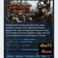 Medieval Kingdom Wars●STEAM/Auto delivery