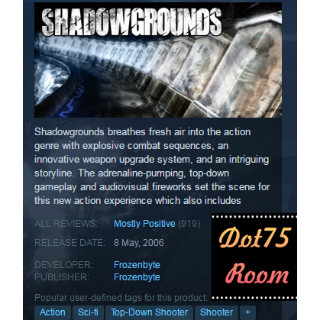 Shadowgrounds●STEAM/Automatic delivery