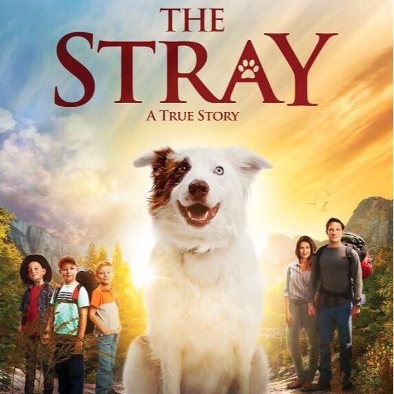 The Stray (2017) Movies Anywhere | VUDU HD Digital Code