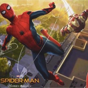 Spider-Man Homecoming (2017) HD Movies Anywhere | VUDU Digital Code