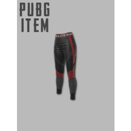 PLAYERUNKNOWN'S BATTLEGROUNDS (PUBG) PGI Title Leggings Steam Key GLOBAL