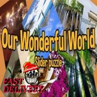 Our Wonderful World Steam Key GLOBAL