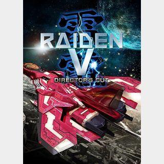 Raiden V Director's Cut (PC) Steam Key GLOBAL