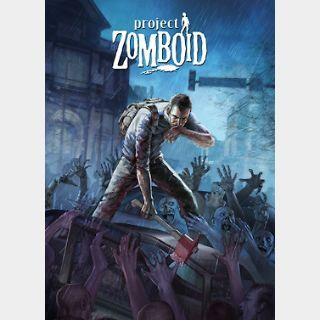 Project Zomboid (PC) Steam Key GLOBAL