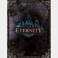Pillars of Eternity Steam Key GLOBAL