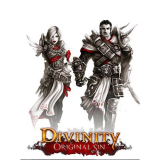 Divinity: Original Sin - Enhanced Edition Collector's Edition GOG.COM Key GLOBAL