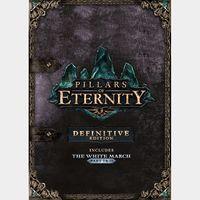 Pillars of Eternity (Definitive Edition) Steam Key GLOBAL