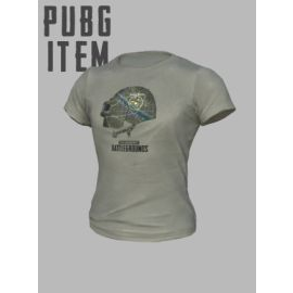 PLAYERUNKNOWN'S BATTLEGROUNDS (PUBG) PGI T-Shirt Steam Key GLOBAL
