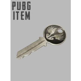 PLAYERUNKNOWN'S BATTLEGROUNDS (PUBG) EARLY BIRD Key GLOBAL