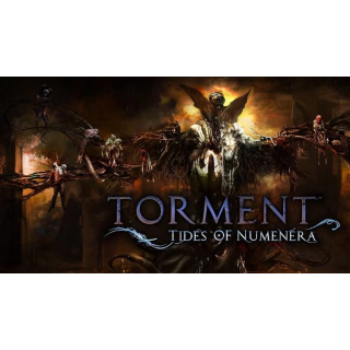 Torment: Tides of Numenera PC + DLC Steam Key
